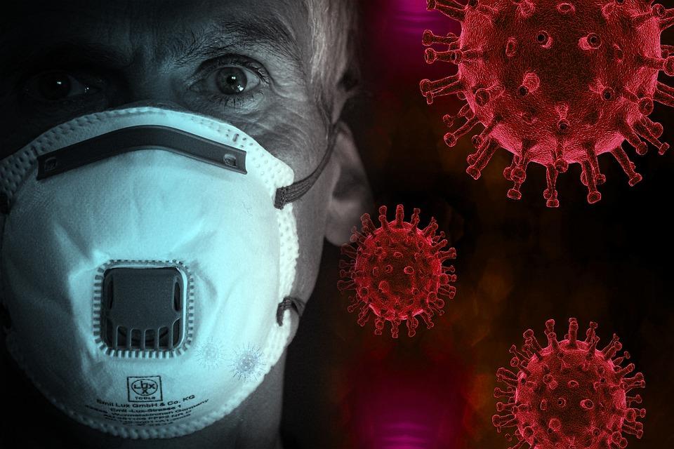La pandémie de Covid-19 : le symbole de l'impact de l'Homme sur la biodiversité ?