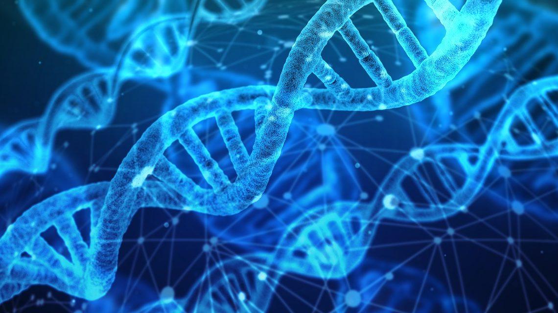 Quel est le prix à payer pour faire un test ADN?